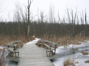 <b>Boardwalk</b><br> This boardwalk on Trail #3 has views across Lake Lonidaw - a kettle lake formed during the last Ice Age.