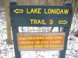 <b>Spur Trail</b><br> At this trail junction, there is a short spur trail that leads out to Lake Lonidaw.