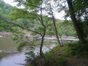 Sweetwater Creek State Park - Red/Blue Loop - June 1, 2008