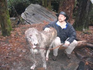 <b>Dog or Horse?</b><br> This dog is so big I think you could ride it.