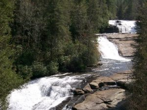 DuPont State Forest - High Falls - April 20, 2008