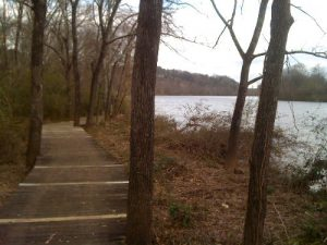 <b>The Boardwalk And River</b><br> This is the River Boardwalk Trail as it follows the river upstream.