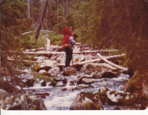 <b>LaMarche Creek</b><br> The Continental Divide National Scenic Trail crosses this creek 6 times on its way down this canyon.
