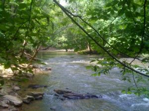 <b>Vickery Creek</b><br> This is Vickery Creek from the banks below the cliffs.