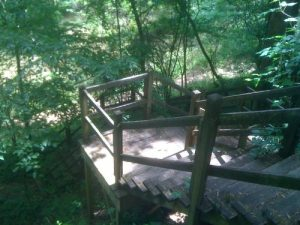 <b>River Steps</b><br> This series of steps drops sharply to the river.