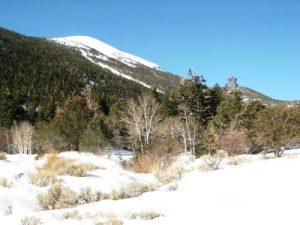 Great Basin National Park - Lehman Creek Trail