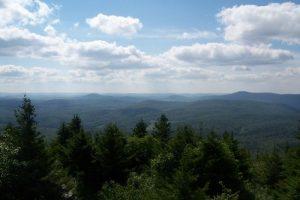 Spruce Knob-Seneca Rocks NRA - Whispering Spruce Trail