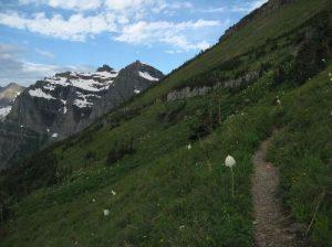 Glacier National Park - Boulder Pass Trail