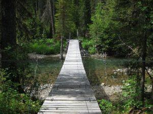 <b>Bounding Bridge</b><br> The bounding bridge over Kintla Creek just before the Upper Kintla Lake campsite.
