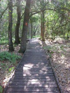 <b>Trail Boardwalk</b>