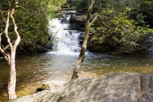 Pigpen and Licklog Falls