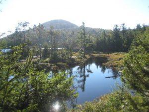 Putnam Trail, Crane Mountain Pond