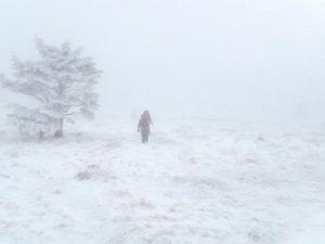 Mount Rogers National Recreation Area - December 27, 2011