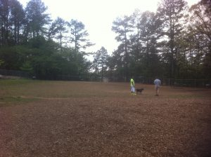 <b>The Dog Park</b><br> Only a few steps off the Trail is the East Roswell Park dog area where dogs can run free.