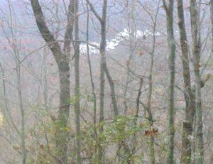 Winding Stairs Trail/Miuka Falls - November 19, 2011
