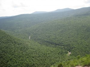 <b>Carrabassett River</b><br> Here's a view from the A.T. down to the Carrabassett River which runs next to Caribou Valley Road.