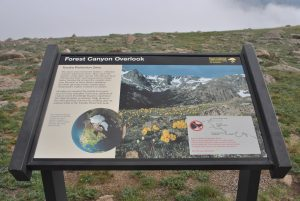 Forest Canyon Pass Overlook
