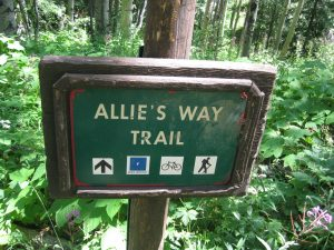 <b>Allie's Way Trailhead</b><br> Here's the western trailhead for Allie's Way with it's junction on the Beaver Lake Trail near Beaver Creek Village.