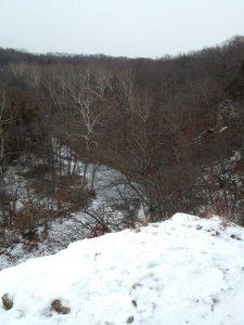 Gans Creek Conservation Area