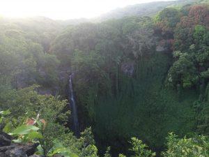 Seven Sacred Pools and Pipiwai Trail - June 14, 2014