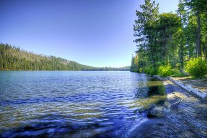 Suttle Lake Trail