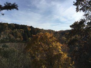 Hocking Hills – Whispering Cave