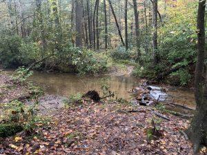 Nimblewill Creek